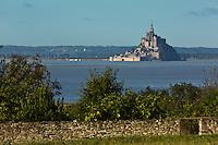 Europe/France/Normandie/Basse-Normandie/50/Baie du Mont-Saint-Michel/Vains: Baie du Mont Saint Michel