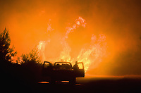 Pictured: A fireman looks on from his truck as the flames rage on.<br /> Re: A forest fire has been raging in the area of Kalamos, 20 miles east of Athens in Greece. There have been power cuts, country houses burned and children camps evacuated from the area.