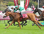 Ebiyza (no. 5), ridden by Christophe-Patrice Lemaire and trained by Alain de Royer Dupre, wins the group 2 Prix de Royallieu for fillies and mares three years old and upward on October 5, 2013 at Longchamp Racecourse in Paris, France.  (Bob Mayberger/Eclipse Sportswire)