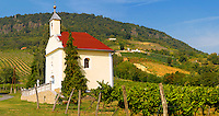 Chapel and wine cellar in the Badascony vineyards, Balaton, Hungary