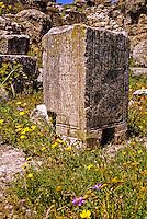 Tunisia, Dougga.  Roman Ruins.  Pillar with Latin Inscriptions.