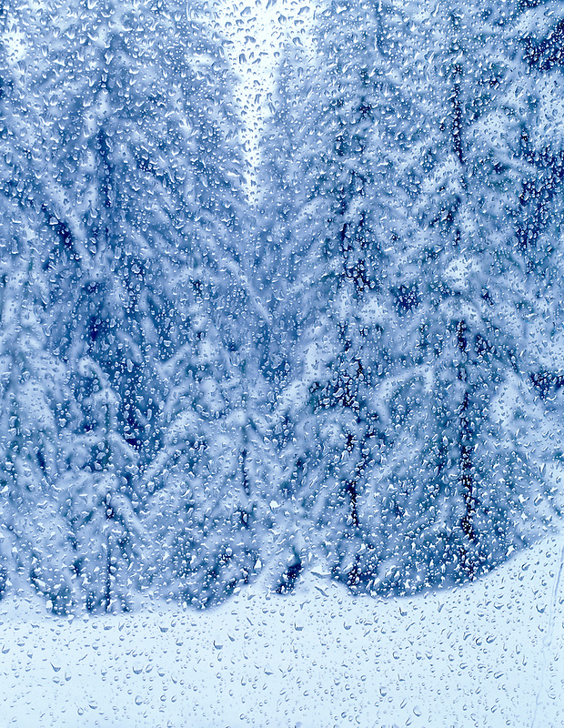 V00339M.tiff   Melted snow on window with snowy trees. Near Santiam Pass, Oregon