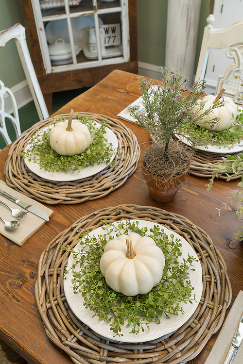 American Farmhouse Style Fall 2018 - Canton Residence | Engaged Media