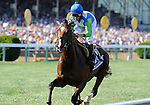 10 May 15: Nicanor (no. 10), ridden by Robby Albarado and trained by Michael Matz, finishes 6th in the grade 2 Dixie Stakes for three year olds and upward at Pimlico Race Track in Baltimore, Maryland.