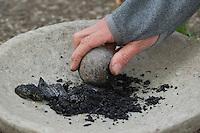 Holzkohle wird zerkleinert, um aus den Kohlekörnern schwarze Farbe herzustellen mit Wasser und Kleister, Kinder malen mit selbstangemischten Erdfarben, Farbe aus verschiedenfarbiger Erde,