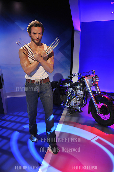Hugh Jackman waxwork figure - grand opening of Madame Tussauds Hollywood. The new $55 million attraction is the first ever Madame Tussauds in the world to be built from the ground up. It is located on Hollywood Boulevard immediately next to the world-famous Grauman's Chinese Theatre..July 21, 2009  Los Angeles, CA.Picture: Paul Smith / Featureflash