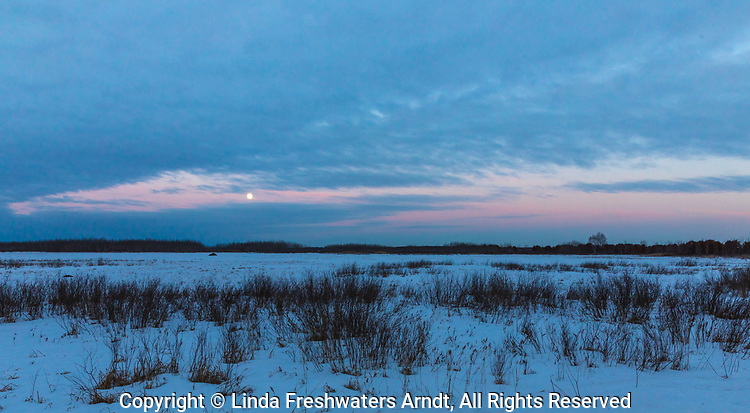 Twilight at Crex Meadows State Wildlife Area in northwestern Wisconsin.