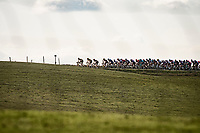 peloton on the horizon<br /> <br /> 15th Strade Bianche 2021<br /> ME (1.UWT)<br /> 1 day race from Siena to Siena (ITA/184km)<br /> <br /> ©kramon