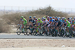 The pelethon on the road during the 1st Stage of the 2012 Tour of Qatar running from Umm Slal Mohammed to Doha Golf Club, Doha, Qatar, 5th February 2012 (Photo Eoin Clarke/Newsfile)