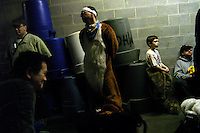 Foxwell Foxcoon (center) and other furries cool off in a basement of the civic center in Poughkeepsie, New York, after marching in the Kid's Expo parade.   Furries are a group of people who identify themselves not as being human but as a walking, talking animal.  For some the lifestyle is complete, animal traits reach into every aspect of life from mundane trips to a grocery store to sexual fantasies.  For others, involvement in the furry fandom is limited to public performances and meet-and-greets.