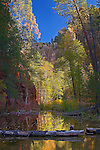 Reflections, West Fork of Oak Creek, near Sedona, Arizona