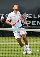 18-06-13, Netherlands, Rosmalen,  Autotron, Tennis, Topshelf Open 2013, , Jesse Huta Galung <br /> <br /> Photo: Henk Koster