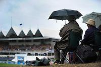 130317 International Test Cricket - NZ Black Caps v England