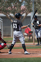 Chicago White Sox outfielder Daniel Palka (63) during a Minor League Spring Training game against the Cincinnati Reds at the Cincinnati Reds Training Complex on March 28, 2018 in Goodyear, Arizona. (Zachary Lucy/Four Seam Images)