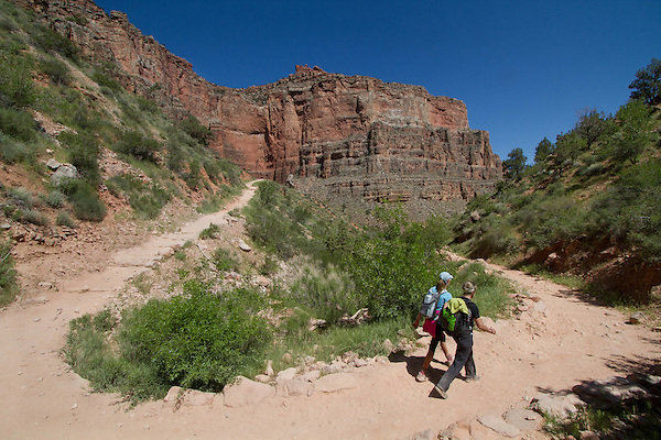 Hikers coming from Indian Gardens Campground and descending the Bright Angel Trail to Phantom Ranch, Grand Canyon National Park, northern Arizona, USA . John offers private photo tours in Grand Canyon National Park and throughout Arizona, Utah and Colorado. Year-round.