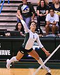 Tulane vs UTEP Women's Volleyball