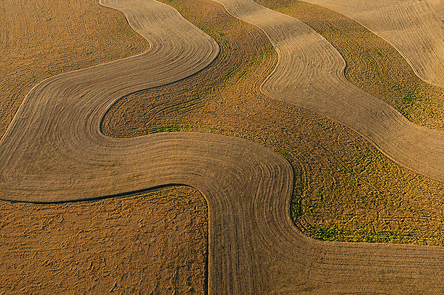 Abstract textures of Wheat fields contouring farming