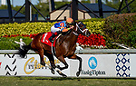 January 23, 2021: Always Shopping, #1, ridden by Irad Ortiz, Jr. wins the La Prevoyante Stakes during Pegasus World Cup Invitational Day at Gulfstream Park in Hallandale Beach, Florida. Scott Serio/Eclipse Sportswire/CSM