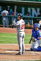 Mitch Trees (25) of the Billings Mustangs at bat against the Ogden Raptors in Pioneer League action at Lindquist Field on August 14, 2016 in Ogden, Utah. Ogden defeated Billings 15-9. (Stephen Smith/Four Seam Images)