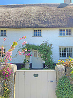 BNPS.co.uk (01202) 558833. <br /> Pic: LillicrapChilcott/BNPS<br /> <br /> Church Cottage.<br /> <br /> A pretty thatched cottage that would not look out of place on a postcard is on the market for £525,000.<br /> <br /> Church Cottage is a charming Grade II listed home with a white picket gate and wisteria growing across the front of it in an idyllic spot just 400 yards from a picturesque cove.<br /> <br /> The chocolate box property is one of just a handful of properties in Church Cove, a rugged part of the south Cornish coast.
