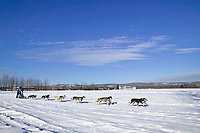 Musher Jeff Conn passes Creamers Field on day three of the oldest continuously run sled dog race in the world, the 2003 Open North American Sled dog championships, Fairbanks, Alaska. The annual race consists of three daily races, the combined fastest time wins.
