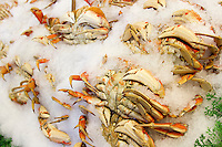 Dungeness crab lie under ice at the Pike Place Fish Market in Seattle, Wash., on July 1, 2013. (photo © KarenDucey.com)