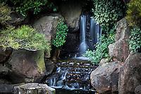 Tucked away in the rocks of a koi pond, a miniature waterfall flows in an urban neighborhood Japanese Garden.