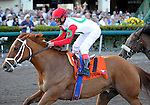 10 February 20: D' Funnybone (no. 7), ridden by Edgar Prado and trained by Richard Dutrow Jr., wins the 57th running of the grade 2 Hutcheson Stakes for three year olds at Gulfstream Park in Hallendale Beach, Florida.