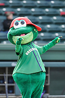 Mascot Reedy Rip'It of the Greenville Drive stirs up the crowd in a game against the Asheville Tourists on Sunday, April 10, 2016, at Fluor Field at the West End in Greenville, South Carolina. (Tom Priddy/Four Seam Images)