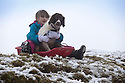 29/01/17<br /> <br /> Following overnight snowfall, Freya Kirkpatrick (9) sledges with Springer spaniel, Chester by Grinlow Tower near Buxton in the Derbyshire Peak District.<br /> <br /> All Rights Reserved F Stop Press Ltd. (0)1773 550665 www.fstoppress.com