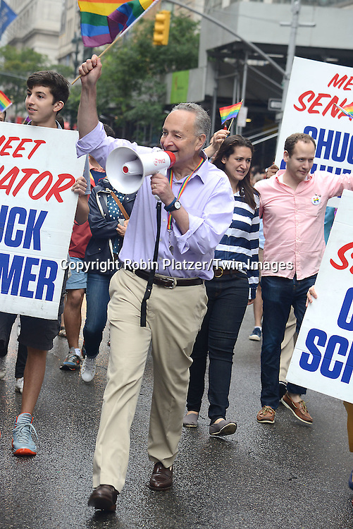 Senator Chuck Schumer attends the 2015 NYC Pride March on June 28, 2015 on Fifth Avenue in New York City. <br /> <br /> photo by Robin Platzer/Twin Images<br />  <br /> phone number 212-935-0770