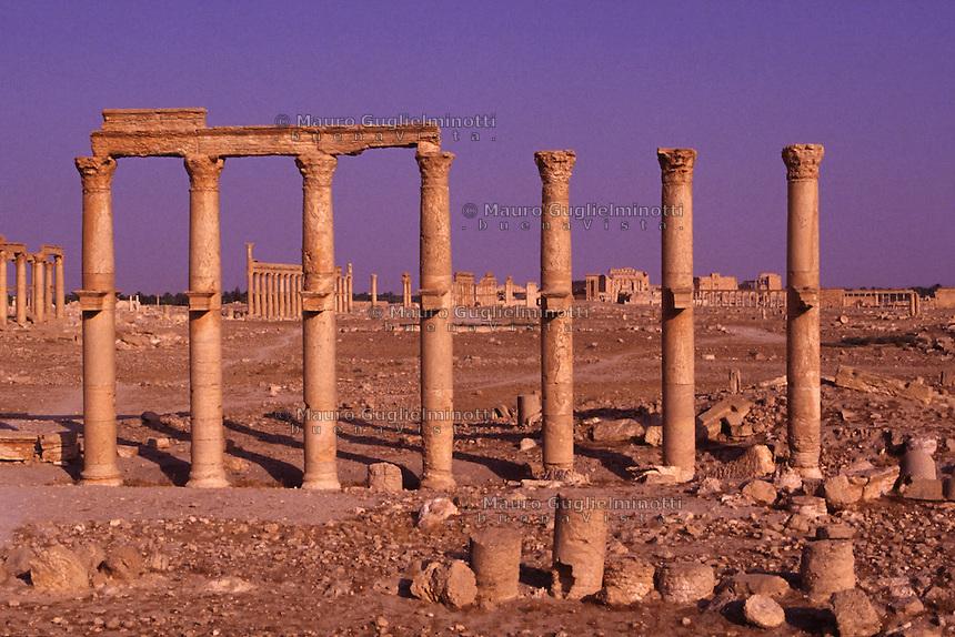 SIRIA - sito di Palmira(Tadmor)  colonnato trasversale