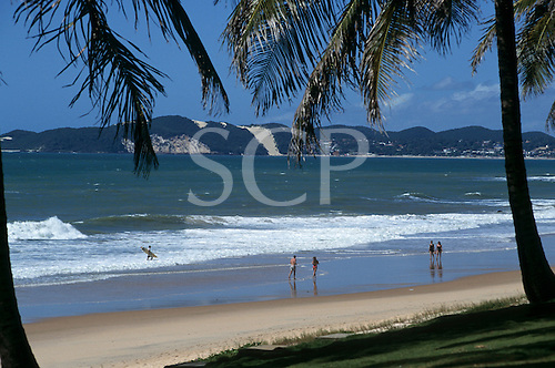 Natal, Brazil. Idyllic beach with palm trees and sand dunes across the bay. Rio Grande do Norte State.