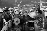 Fishermen arrival at the market<br /> - les pêcheurs arrivent au marché <br /> Nha Trang, Vietnam