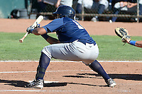 Jalen Harris (16) of the Helena Brewers squares to bunt in action against the Ogden Raptors in Pioneer League play at Lindquist Field on July 21, 2013 in Ogden Utah. (Stephen Smith/Four Seam Images)