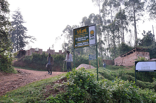 Gorilla Trekking, Bwindi Impenetrable Forest, Uganda.  Road signs point to the forest entrance 2 km up the precarious mountain road.