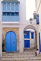 Tunisia, Sidi Bou Said.  Door to Private Home, and Archway Entrance to Side Street.