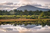 Dawn over Hapuka wetland and river near Haast, West Coast, UNESCO World Heritage Area, South Westland, New Zealand, NZ