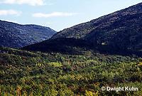 AC25-001b  Forest - Acadia National Park, Maine
