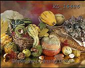 Interlitho-Alberto, STILL LIFE STILLEBEN, NATURALEZA MORTA, paintings+++++,pumpkins,KL16486,#i#, EVERYDAY ,autumn