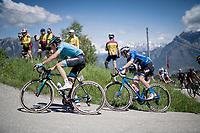 Maglia Azzurra / KOM leader Giulio Ciccone (ITA/Trek-Segafredo) up the Cima Campo climb<br /> <br /> Stage 20: Feltre to Croce D'Aune-Monte Avena (194km)<br /> 102nd Giro d'Italia 2019<br /> <br /> ©kramon
