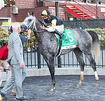 """August 22, 2020: Halladay #5, ridden by Luis Saez and trained by Todd Pletcher win the Fourstardave (G1), a Breeder's Cup World Championships """"Win and You're In Race"""" at Saratoga Race Course in Saratoga Springs, N.Y. Rob Simmons/Eclipse Sportswire/CSM"""