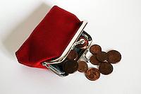 Borsellino degli spiccioli. Purse for coins...