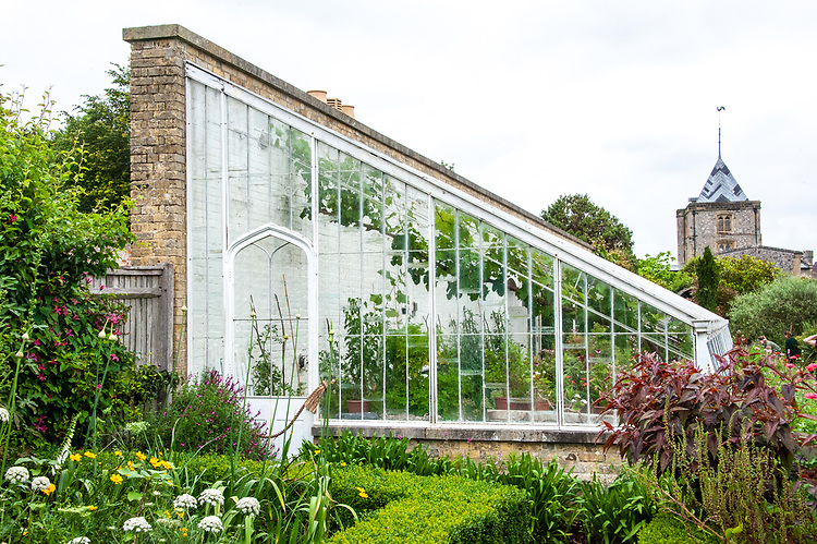 The original Victorian Vine House built in 1850 by Clarke and Hope, Arundel C astle Gardens, late June.
