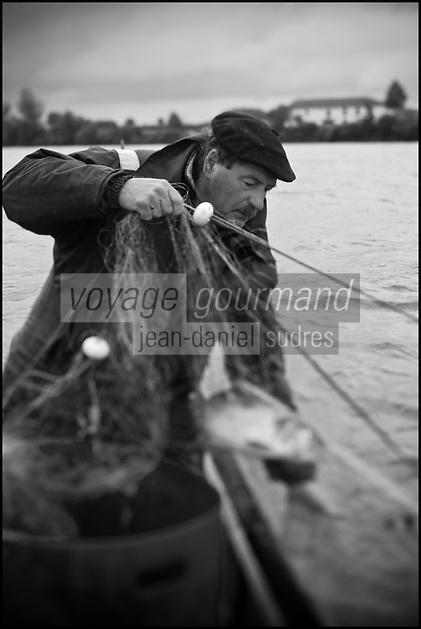 Europe/France/Aquitaine/40/Landes/Env de Sainte-Marie-de-Gosse: A la pêche avec Christian Betbeder, agriculteur et pêcheur professionnel sur l'Adour - En plus de ses vaches et kiwis il pêche depuis 35 ans le saumon et l'alose sur l'Adour - AUTO N: A12-3007
