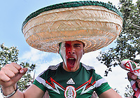 Mexico team fan cheers before Copa America Centenario group C match, Monday, June 13, 2016 in Houston, Tex. (TFV Media via AP) *Mandatory Credit*