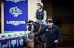 ARCADIA, CA - NOVEMBER 03:  Tom's Ready and trainer Dallas Stewart at Santa Anita Park on November 03, 2016 in Arcadia, California. (Photo by Alex Evers/Eclipse Sportswire/Getty Images)