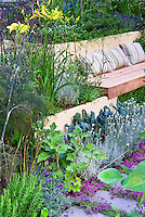 Edible landscaping: Thyme herbs in flower Thymus, kale vegetables, in crevices and nooks and crannies of path stepping stones walkway with herbs and lettuce vegetables: rosemary Rosmarinus, Salvia officinalis, Lavandula lavender, dill, kale, patio, Garden benches with pillow cushions