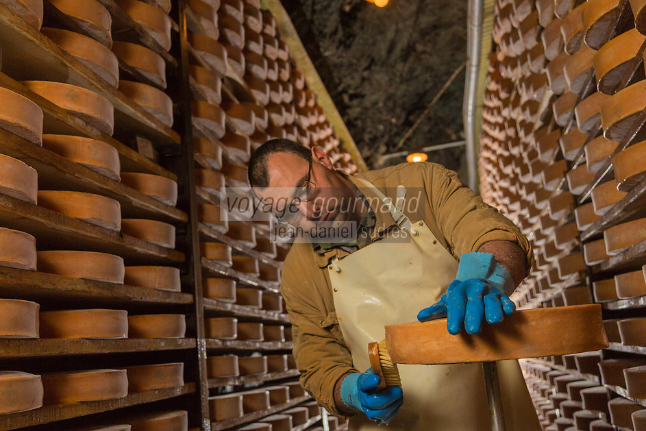 Italie, Val d'Aoste,  Issogne: Cave d'affinage de la Fontina // Italy, Aosta Valley,  Issogne:  Fontina maturing cellar <br /> <br /> AUTO N°: 2013-157