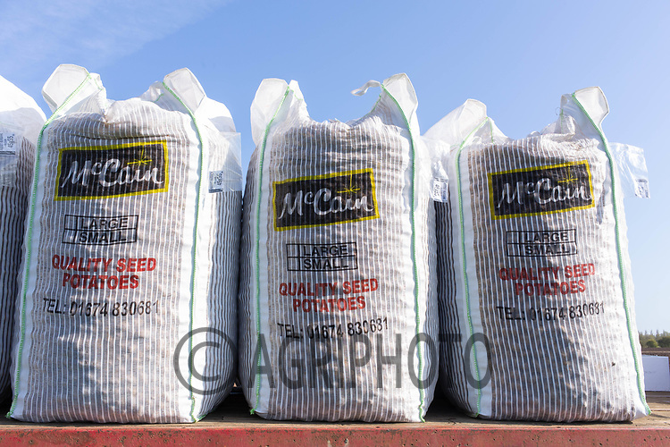 21-4-2021 Bags of Seed potatoes <br /> ©Tim Scrivener Photographer 07850 303986<br />      ....Covering Agriculture In The UK....
